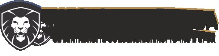 темный логотип
